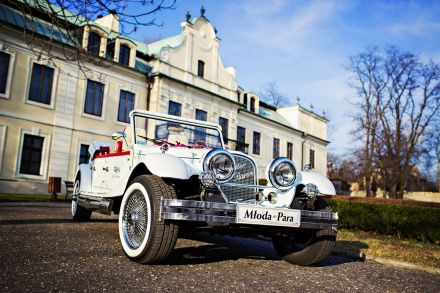 Eleganckie samochody na wyjątkową uroczystość - Będzin - śląskie