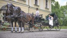Bryczką do ślubu i nie tylko  -  Tarnowskie Góry  -  śląskie