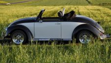 Wyjątkowy Volkswagen Garbus Cabrio 1959r. na specjalne okazje. - Opole - opolskie
