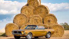 Mustang `66 na Twoje wesele - Piekny i Wyjatkowy --- SLASK , Opolskie Małopolska  -  Jastrzębie-Zdrój  -  śląskie