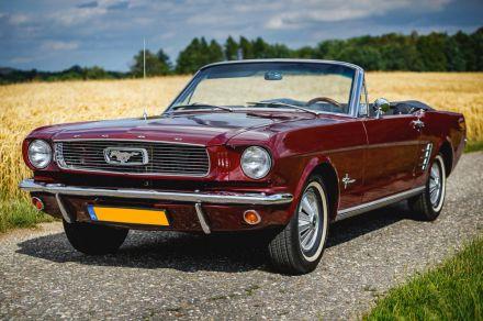 Ford Mustang `66 Cabrio - Wynajem samochodow slubnych, auto na slub - Rybnik - śląskie