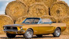 Mustang `66 Cabrio - Piekny i Wyjatkowy na specjalne okazje  -  Rybnik  -  śląskie
