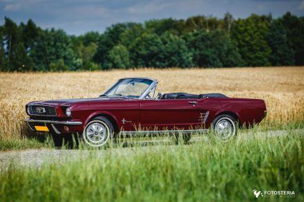 Ford Mustang `66 Cabrio na Twoim Weselu - wynajem samochodow slubnych  -  Katowice  -  śląskie