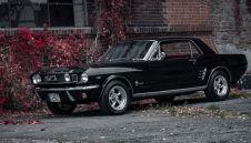 Mustang in Black 1966  -  Siemianowice Śląskie  -  śląskie