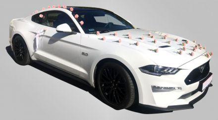 Samochód do ślubu Bielsko-Biała Ford Mustang Nowy - Bielsko-Biała - śląskie