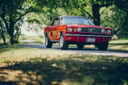 Ford Mustang 1966r - Katowice - śląskie