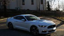 Wynajem auto do ślubu Ford Mustang biały  -  Kielce  -  świętokrzyskie