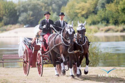 W kare konie do ślubu - Grudziądz - kujawsko-pomorskie