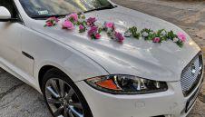Jaguar xf luxury luksusowe auto do ślubu biały  -  Lublin  -  lubelskie