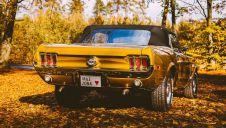 Mustang `68 ZŁOTY Cabrio - Twoje auto na slub  -  Rybnik  -  śląskie