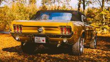 Mustang 68 Cabrio w złocie - SLASKIE  -  Świerklany  -  śląskie